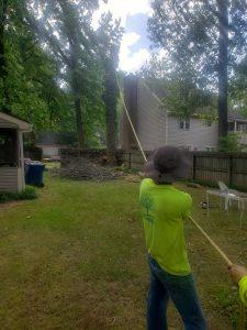 tree removal service company searcy cabot arkansas heber springs ar