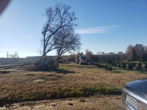 land clearing underbrush removal brush removal brush removed land clear company land clearing service searcy beebe bald knob cabot arkansas white county lonoke county ar jacksonville ar cabot ar heber springs arkansas searcy