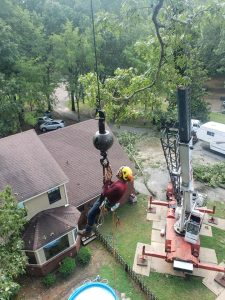 tree cutting services tree cutter trees cut searcy cabot arkansas heber springs ar