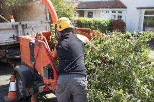 wood chipper service tree heber springs company searcy arkansas